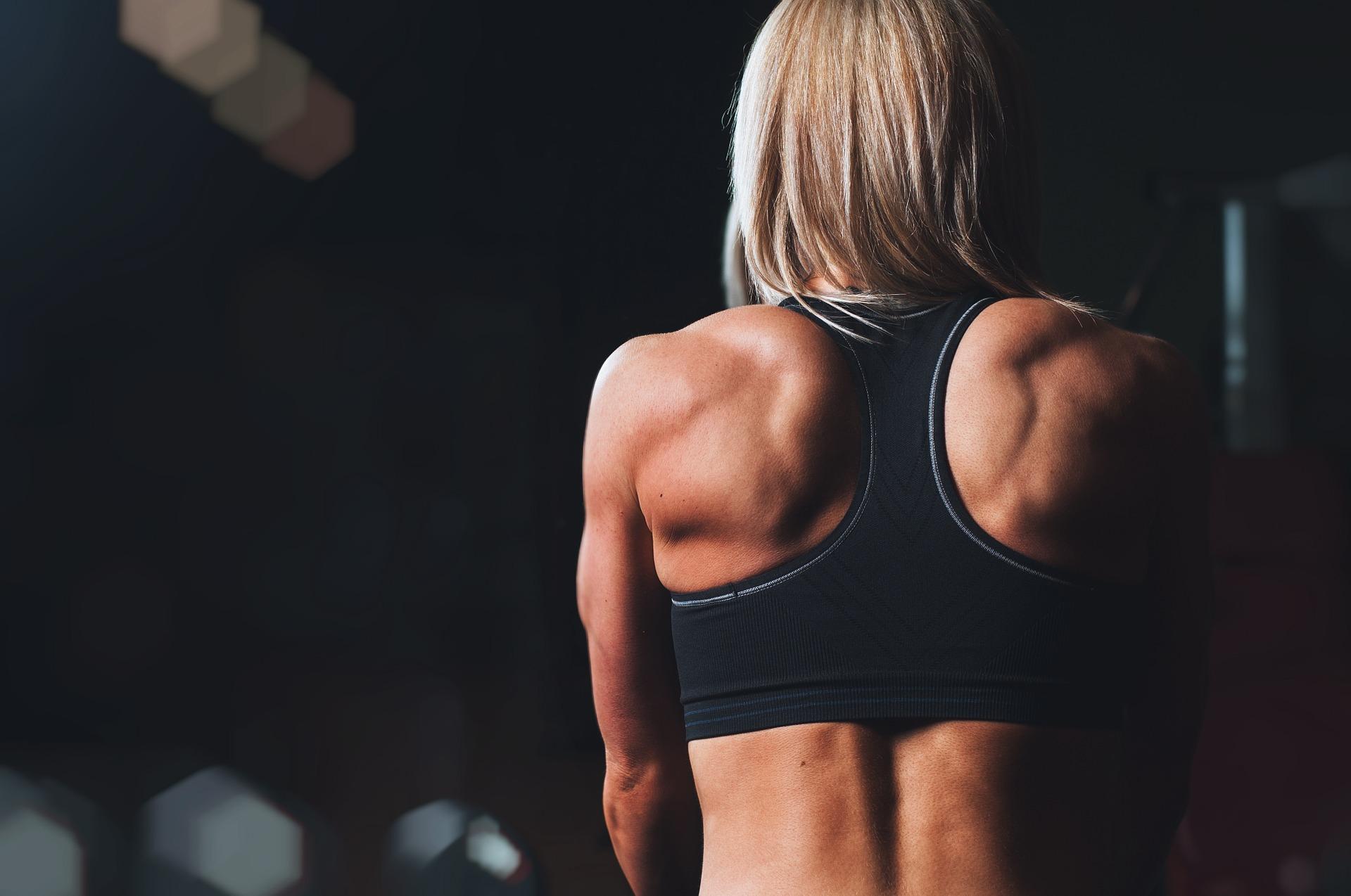training-pixabay.pl